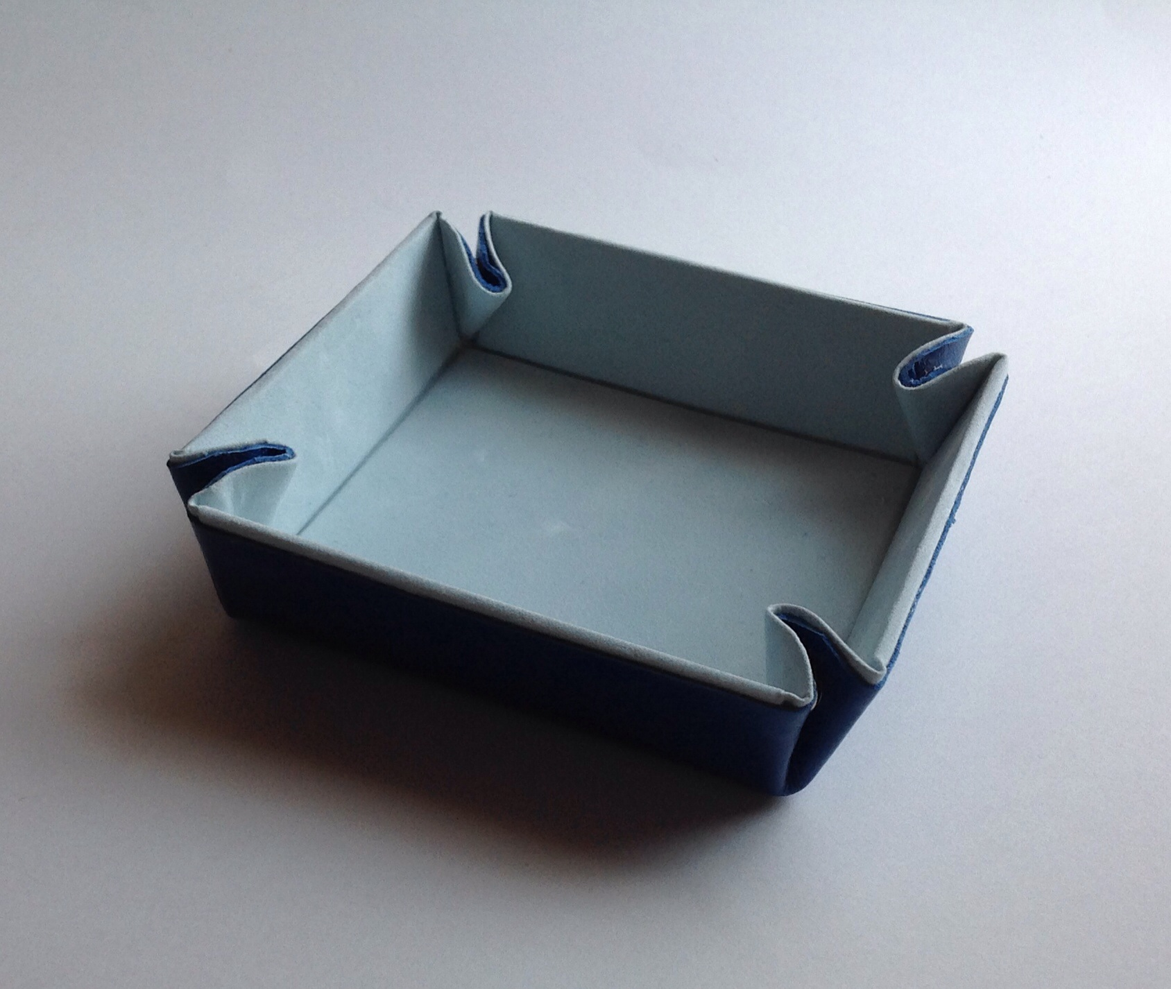 sanap tray