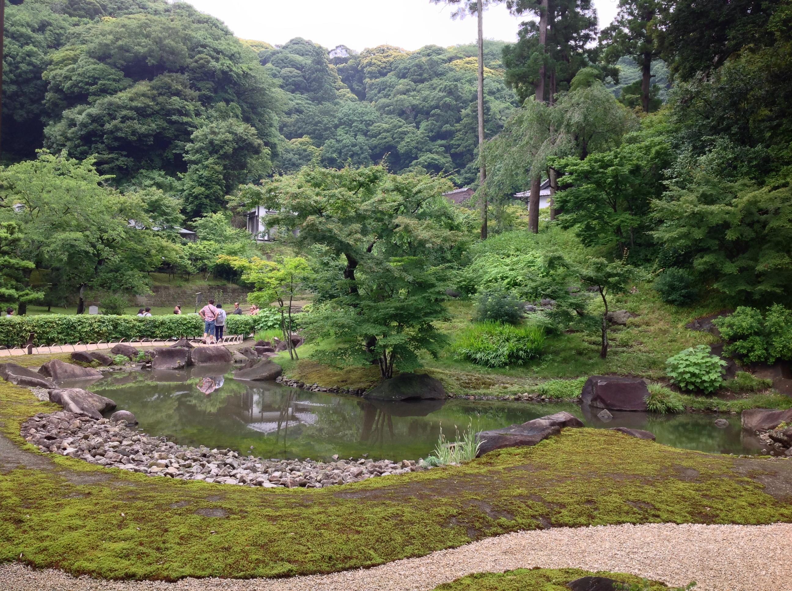 garden behind hondo